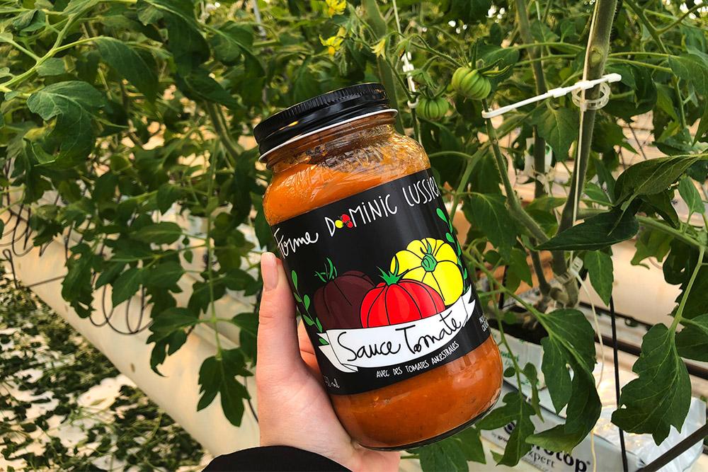tomates ancestrales Dorothée-l'épicurienne sauces tomates