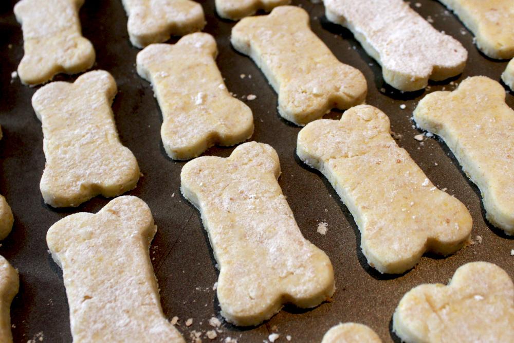 biscuits chiens épicuriens
