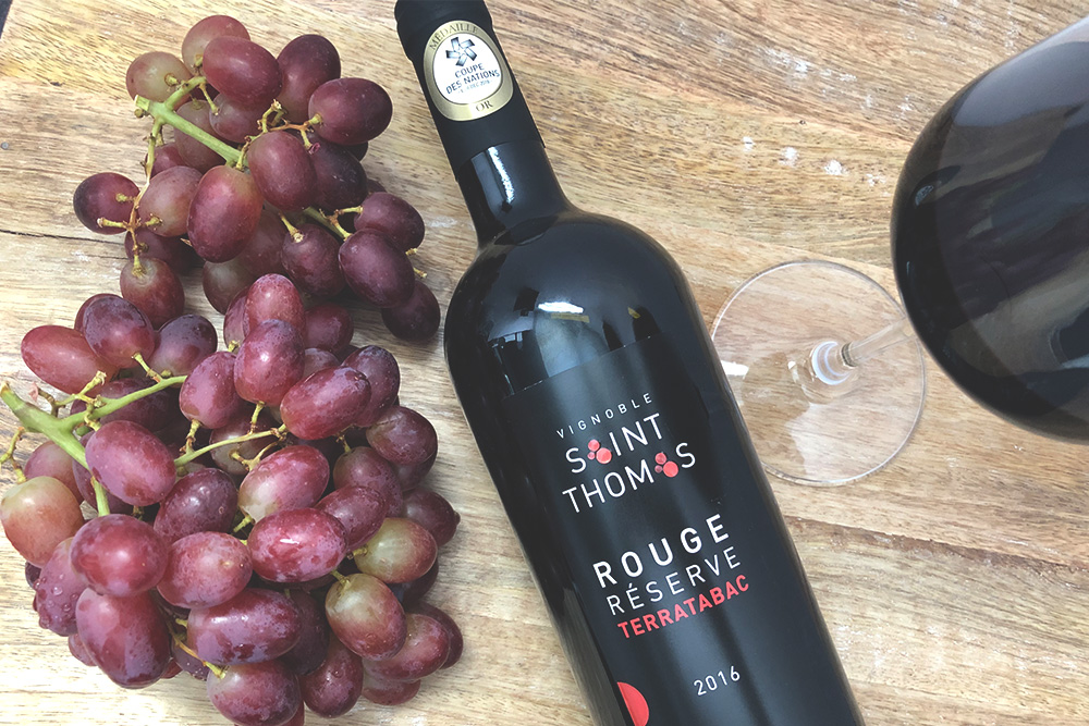 vignoble-saint-thomas-rouge-dorothee-decouvertes-coupe-de-vin