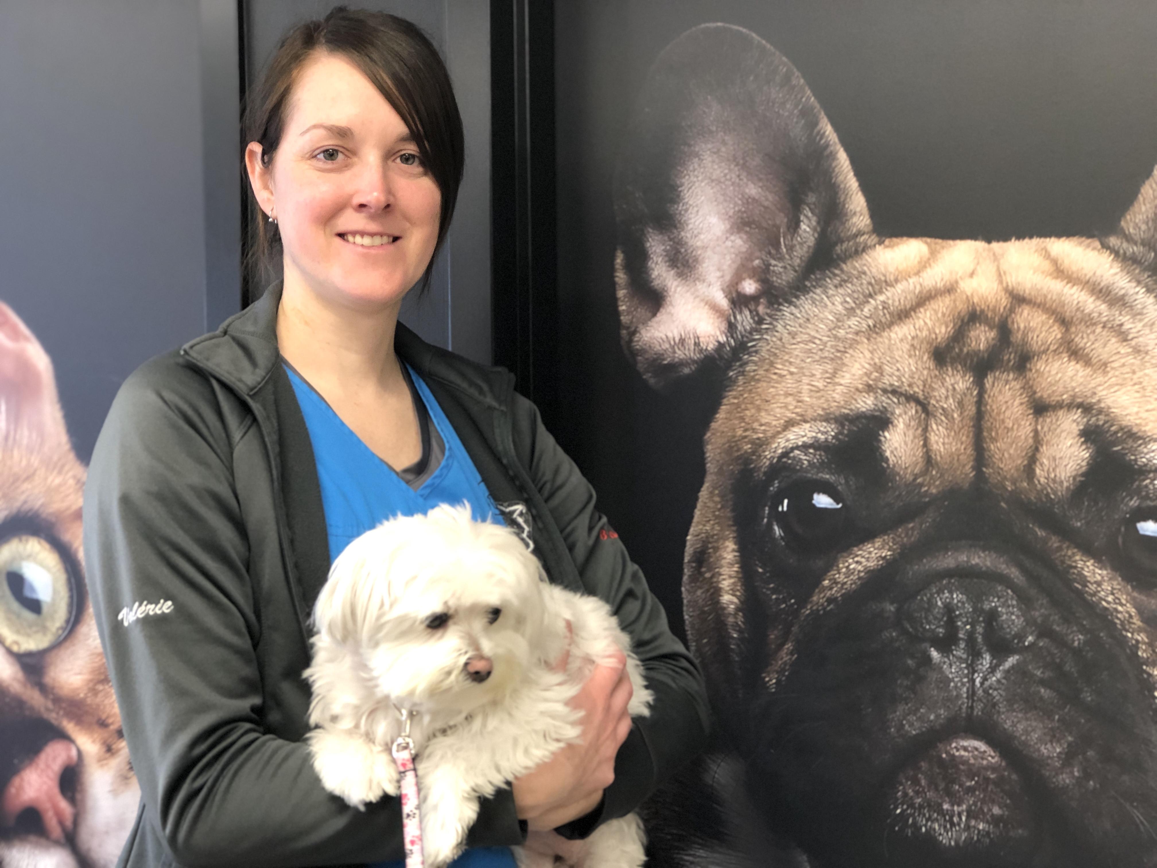 Rosie_chez_le_veterinaire